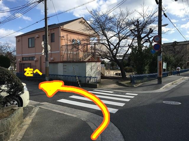 ⑧公園(昭和公園)を左へ